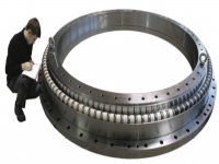 轉盤軸承 Slewing Bearing